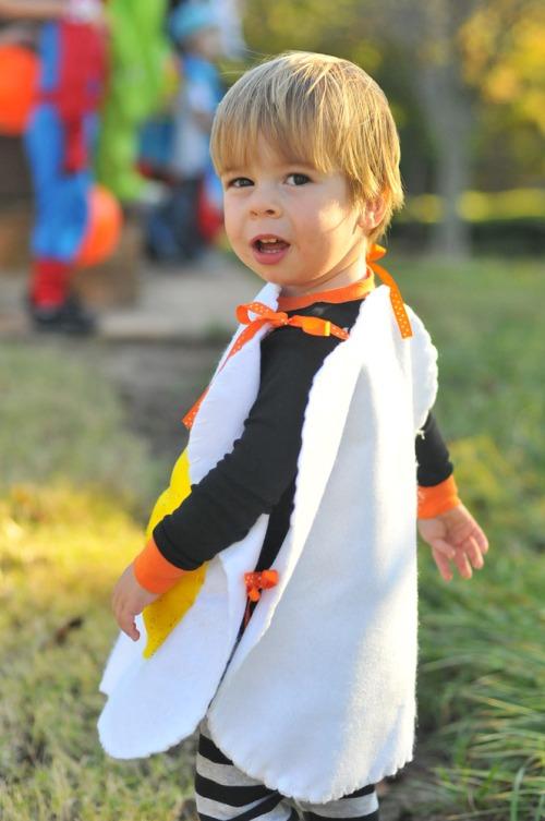 Halloweenmaxturn