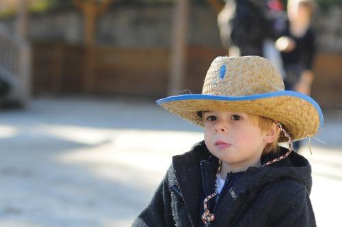 Horsesmaxcowboy