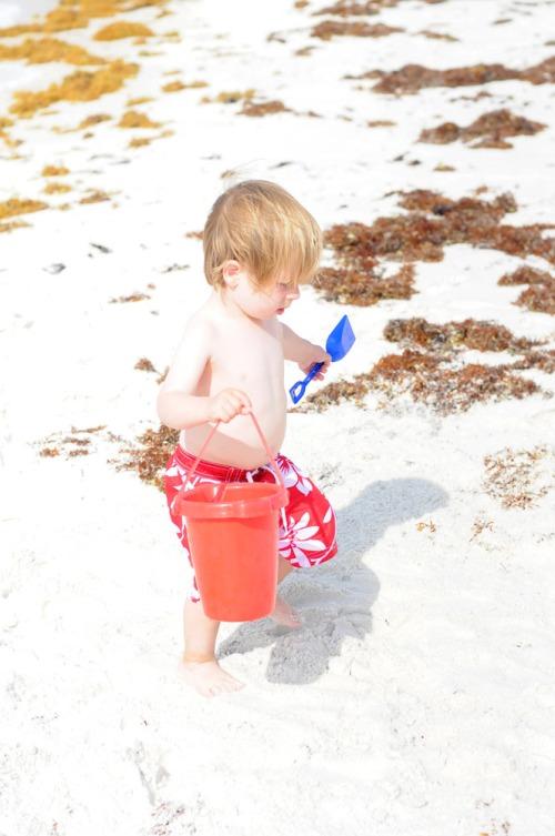 Beachalexbucket